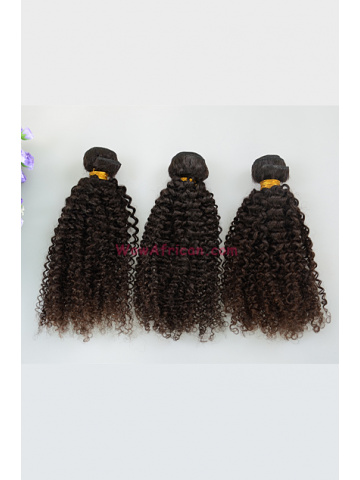 Natural Color Kinky Curl Brazilian Virgin Hair Weave 3pcs Bundle[WB260]