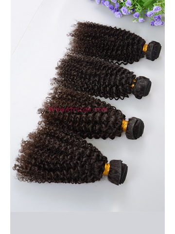 Brazilian Virgin Hair Weave 4pcs Bundle Natural Color Kinky Curl[WB261]