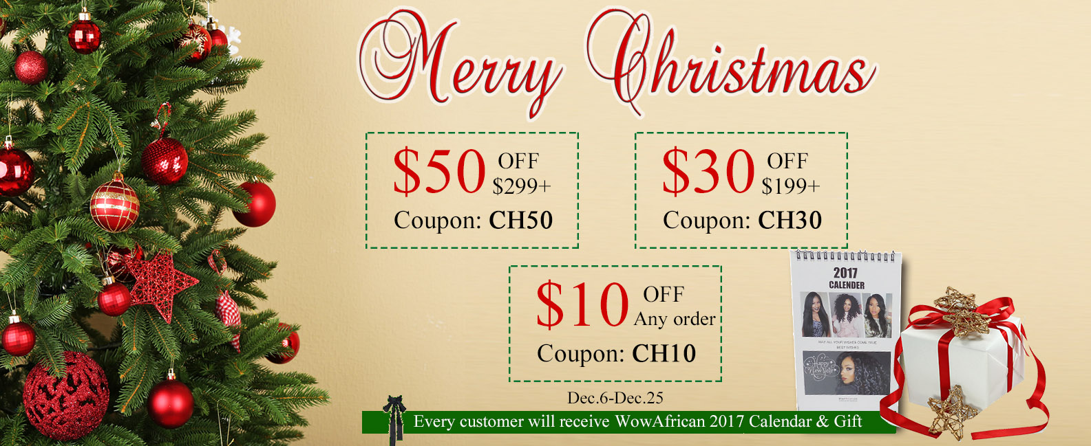 Christmas sale for hair